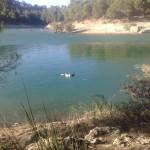 El Chorro, Parque natural de Ardales, Embalses de Guadalhorce-Guadalteba