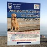 Playa canina Málaga / Playas de Málaga