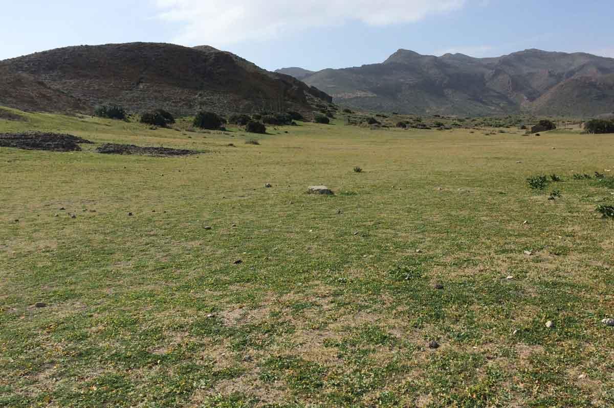 Cabo de Gata im Frühling