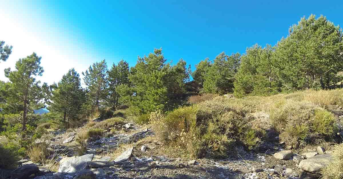 3 Tipps für ein Wochenende in den Alpujarras / Granada