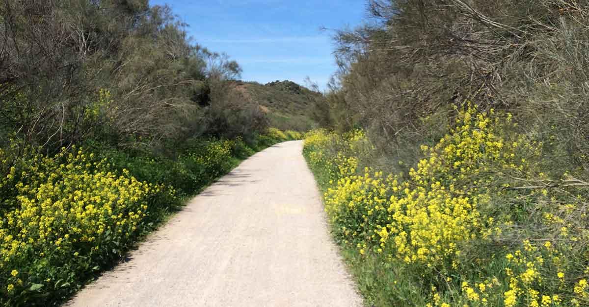 Wandern in Andalusien: 6 Beliebte Wanderrouten, Infos, Guide