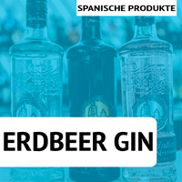 Puerto de Indias Gin kaufen