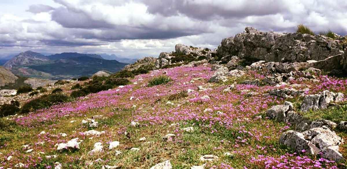 Wandern Monte Huma Andalusien