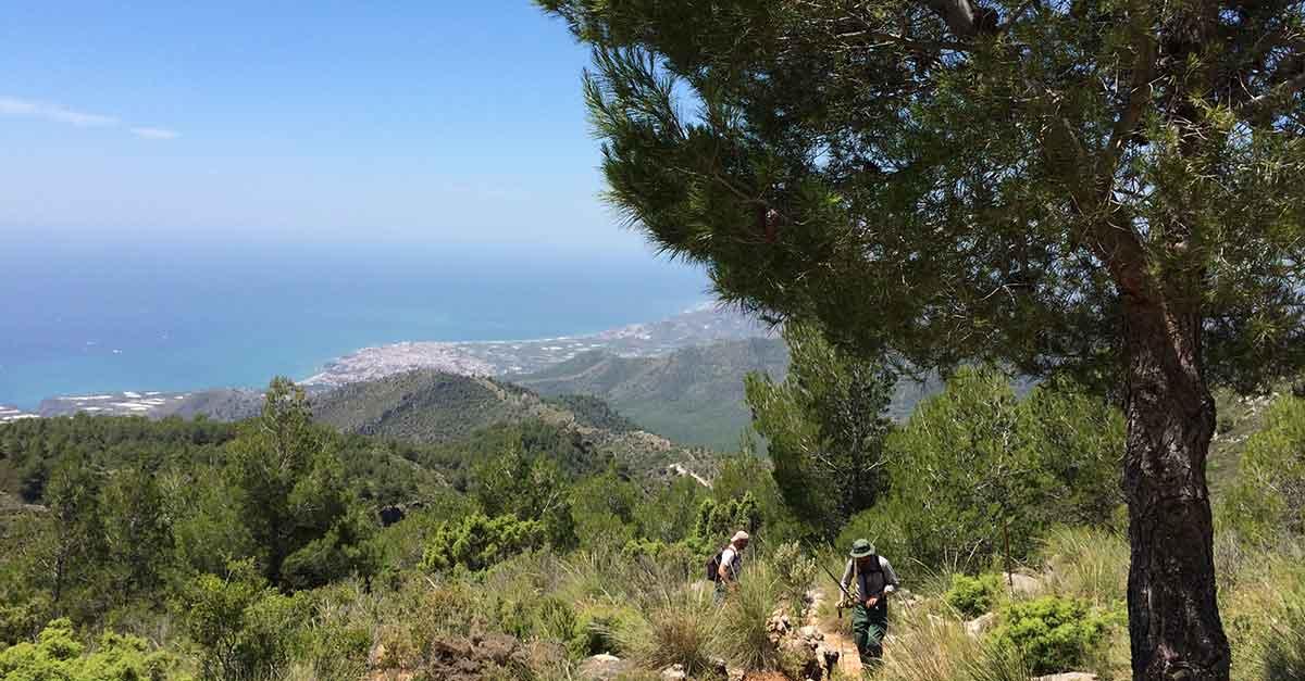 Wanderung auf den Pico del Cielo
