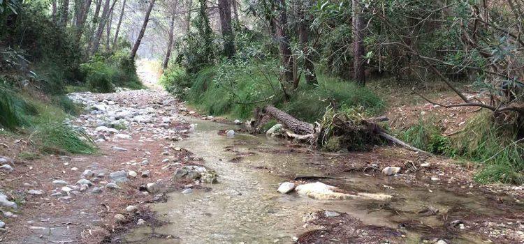 Wandern im Flussbett des Rio Higueron in Frigiliana: Alle Infos