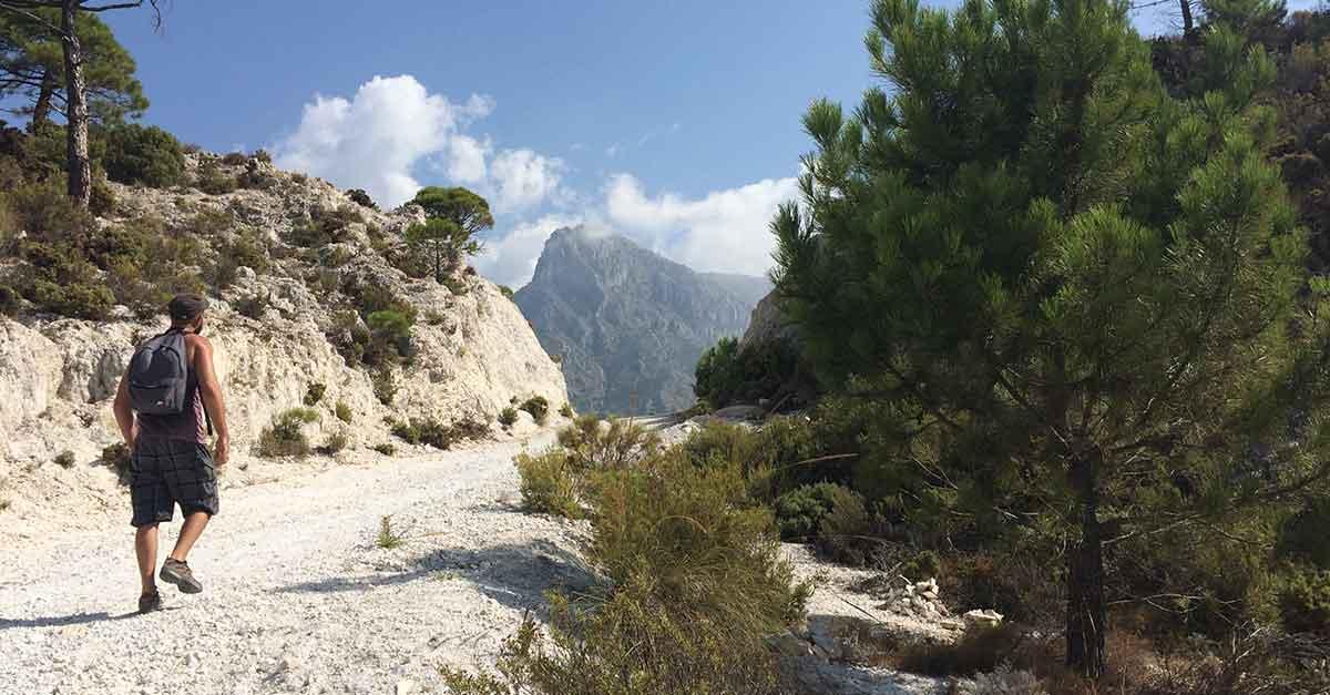 Cerro Cisne