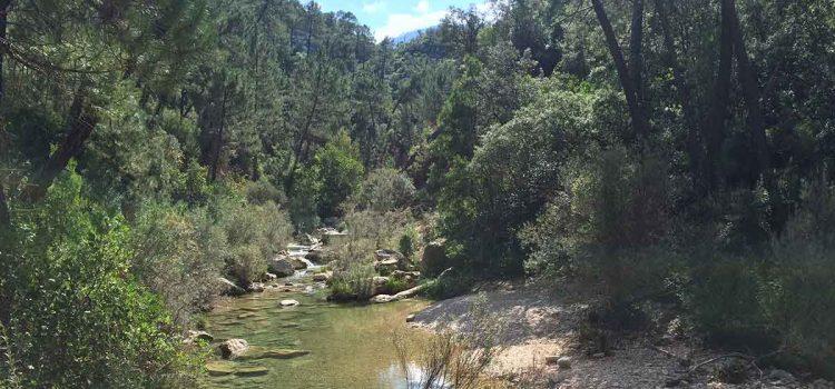 Sierra de Cazorla: Das grösste Naturschutzgebiet in Andalusien – Touren, Unterkünfte, Infos