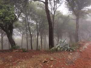 Montes de Málaga im Regen