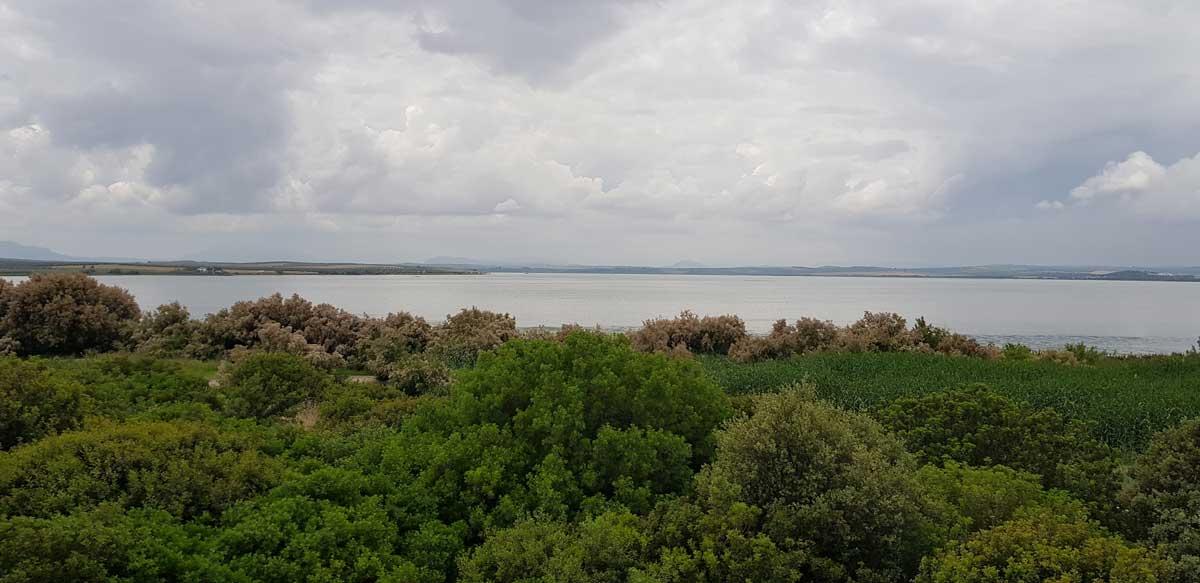Lagune Fuente de Piedra