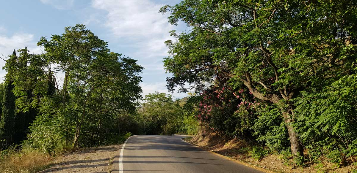Straße nach dem botanischen Garten hinauf zum Stausee El Limonero.